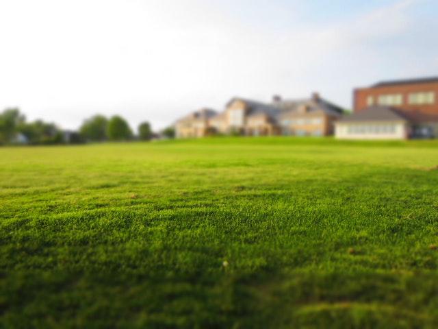 avoir une belle pelouse